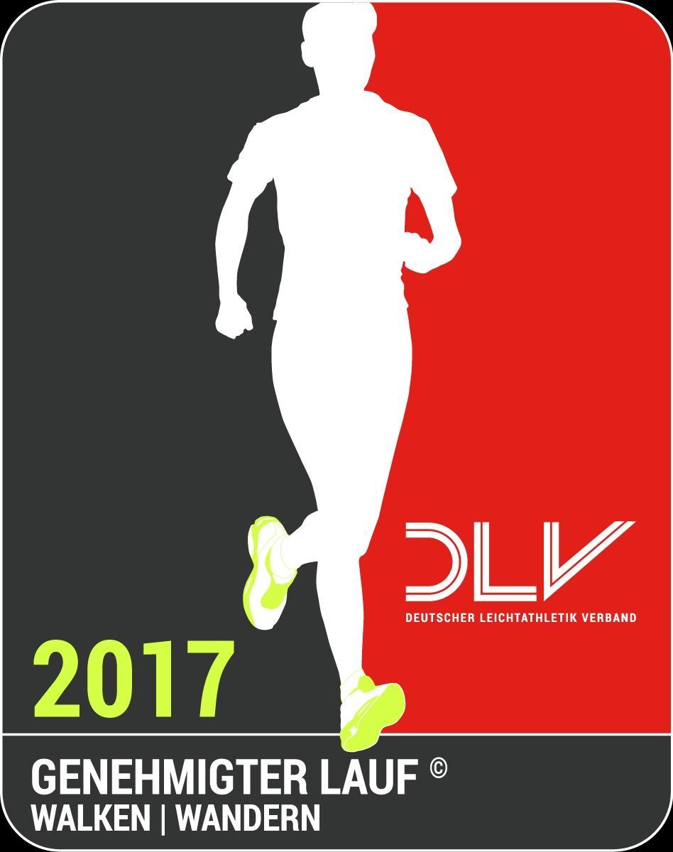DLV Logo 2017